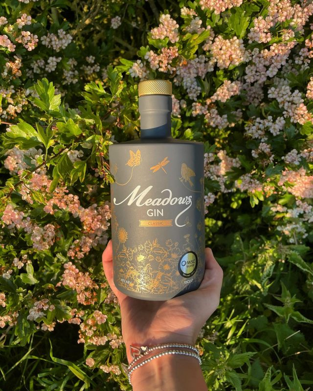 🦋 A world painted with wildflowers and strung with a chorus of natural sounds 🦋  How beautiful does our Meadows Gin Bottle look during #goldenhour? ☀️   Here's to a Summer of endless sun, smiles and of course Meadows Gin 😁🍸   #ginoclock #gintime #gintonic #ginstagram #ginstagrammer #ginspiration #ginspired #ginshelfie